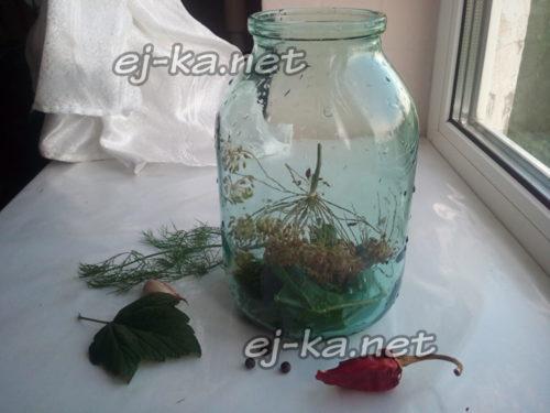 пряные травы в банке