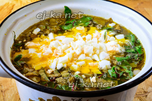 закладка зелени и яйца