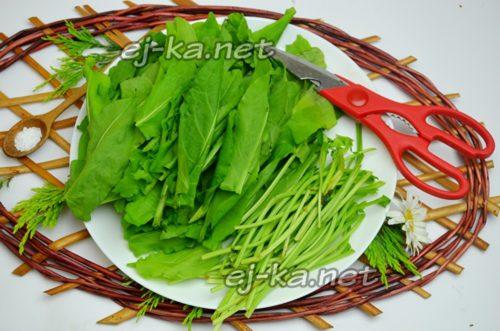 листья щавеля перебрать, отрезать стебли