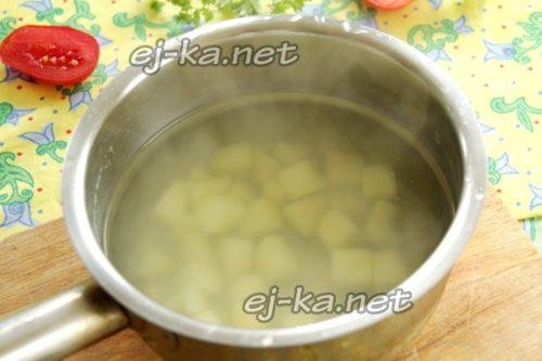 опустить картофель в кипящую воду, посолить