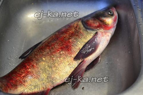 рыбу промыть