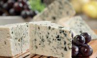 Сорта сыров с плесенью: популярные названия, виды и описания с фото, особенности приготовления и хранения