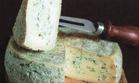 Особенности приготовления сыра горгонзола в домашних условиях