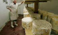 Особенности изготовления сыра с плесенью на производстве и рецепты для домашнего приготовления